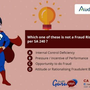 Auditguru Fraud Risk factor