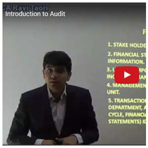 Introduction to Audit